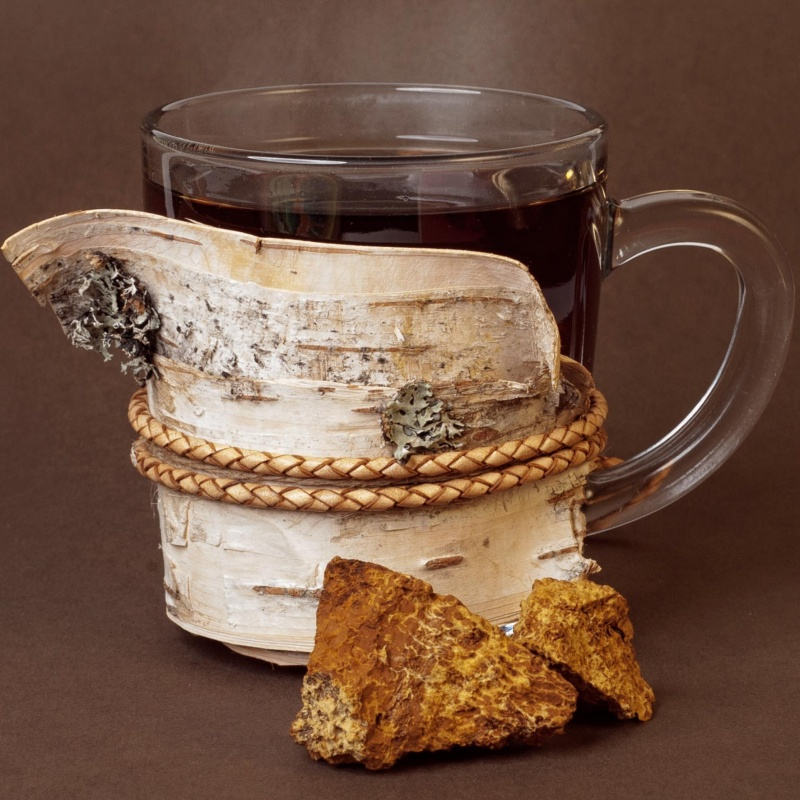 Chaga Mashroom Product Photography